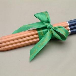 ดินสอจุ่มหัว